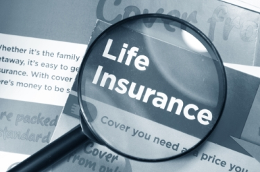 Robert Remin - Whole Life Insurance v. Term Life Insurance — Which One is Right for You?